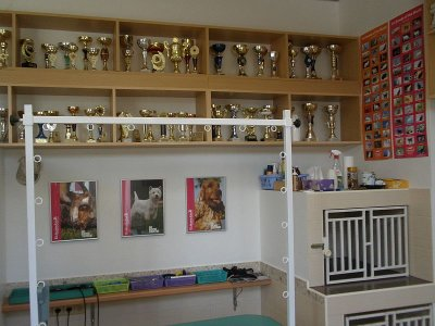 Grooming salon for dogs Prag 5